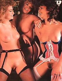 vintage porn hairy armpits fuck pics